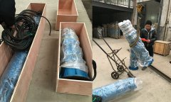 Indonesia customers order deep well pump